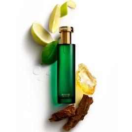 Source1 Eau De Parfum, 100ml