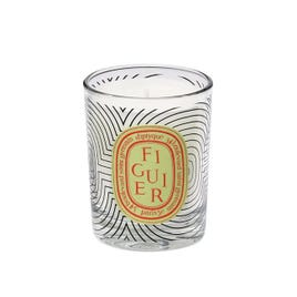 Dancing Oval Candle Figuier Limited Edition, 190g
